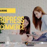 สร้าง Web ด้วย WordPress โดยใช้ Theme Flatsome