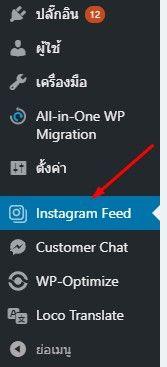 ติดตั้ง Plugins instagram feed